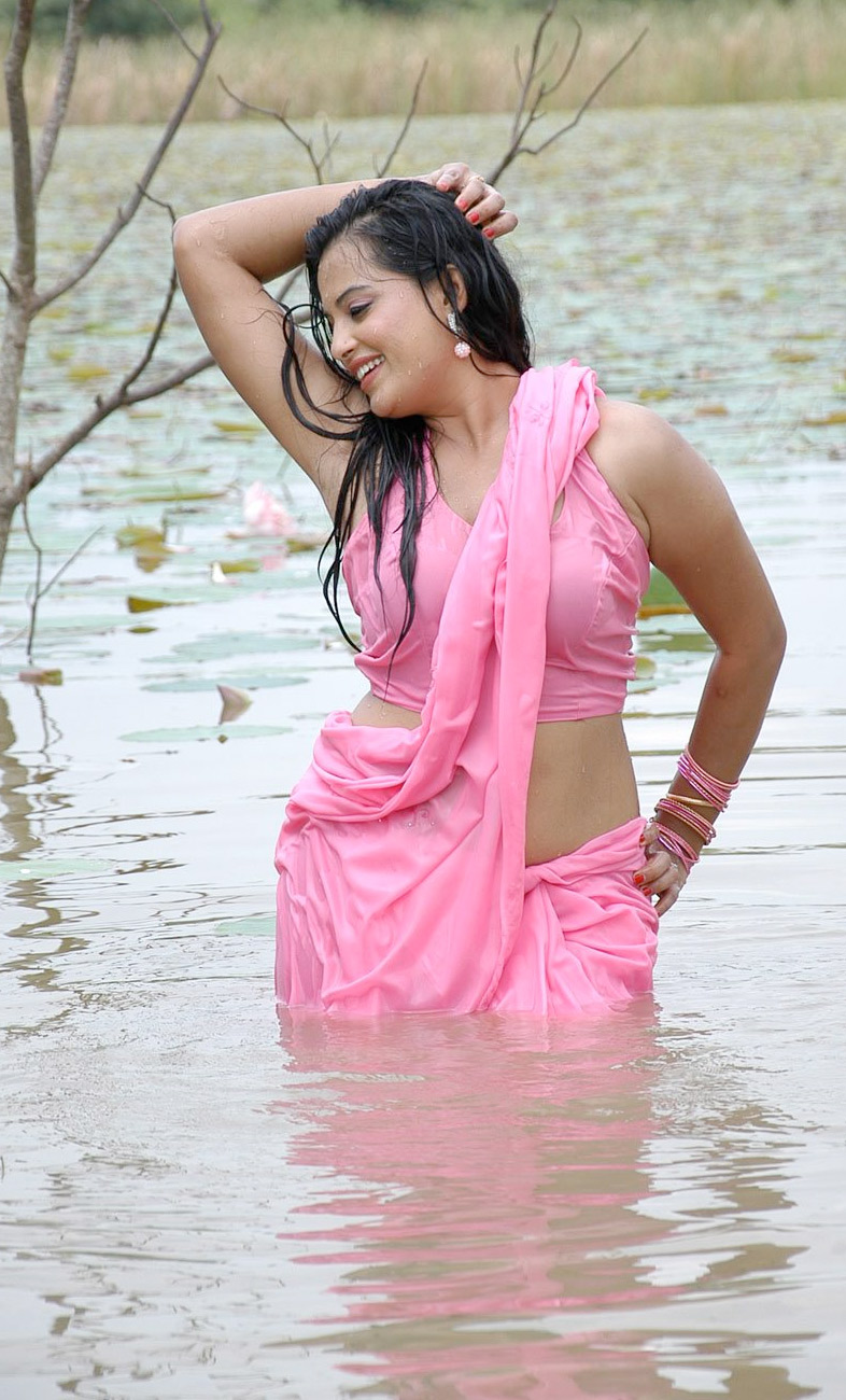 Saree Gallery  Craziest Photo Collection  Page 8-4094