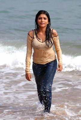 Actress Pooja Chopra Hot Wet Photos