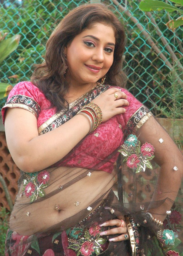 Indian Punjabi chubby bhabhi