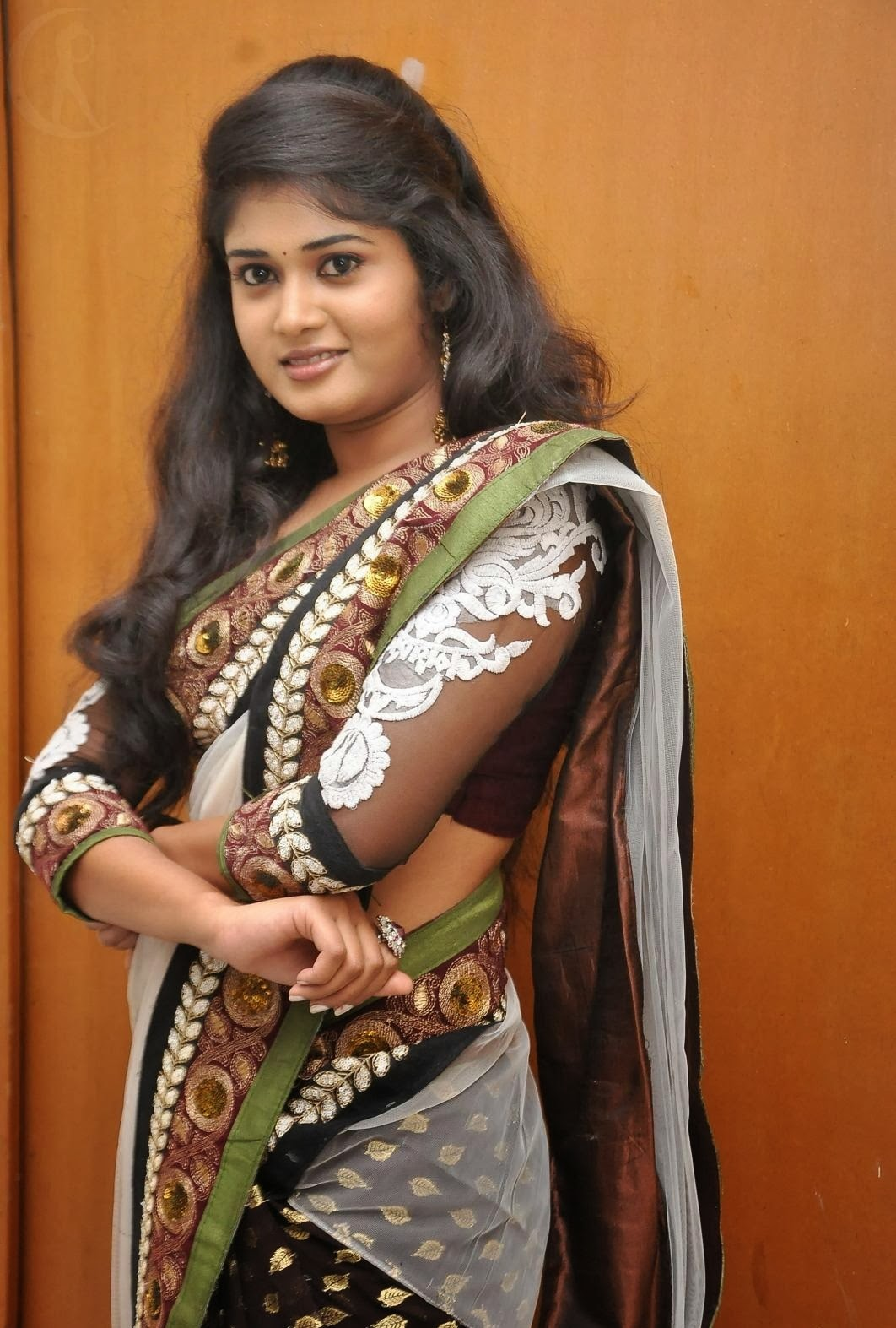 36 Hot South Indian Actress In Saree  Craziest Photo -9403
