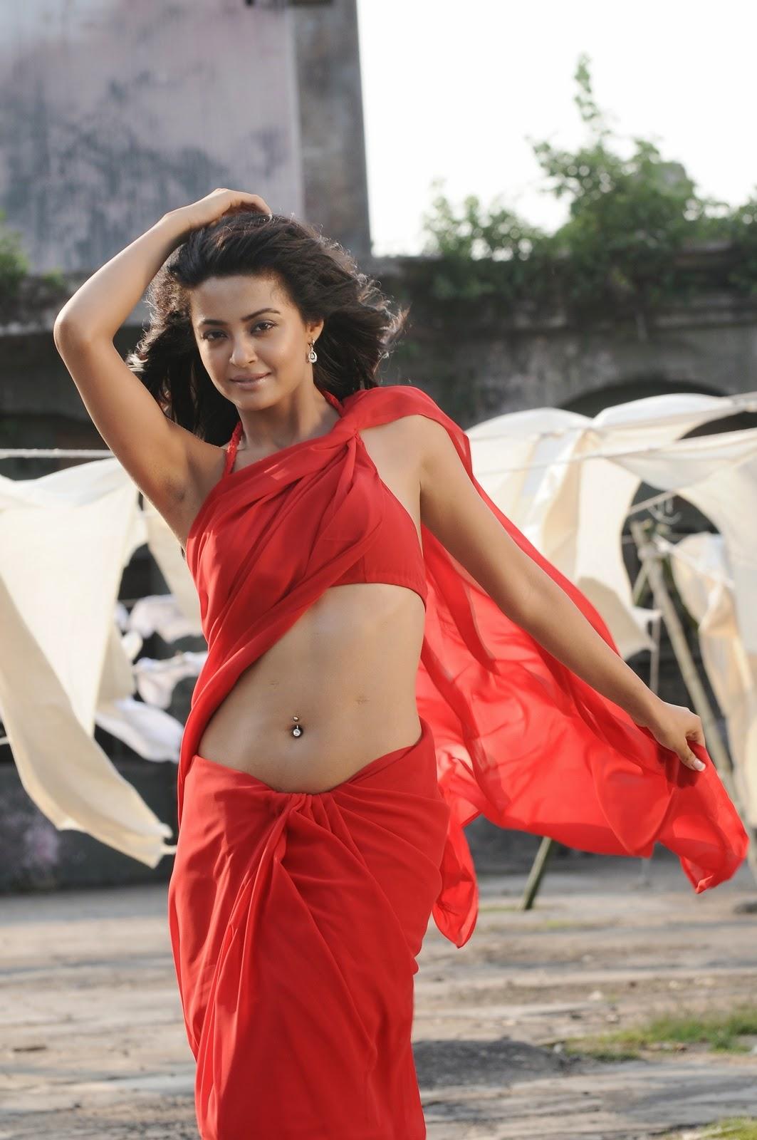 Surveen Chawla navel show